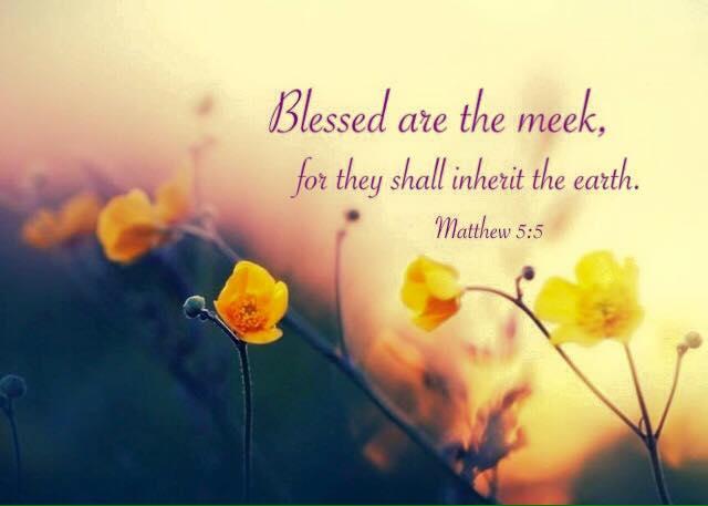 【鱼和饼】灵里贫穷的人有福了,因为诸天的国是他们的