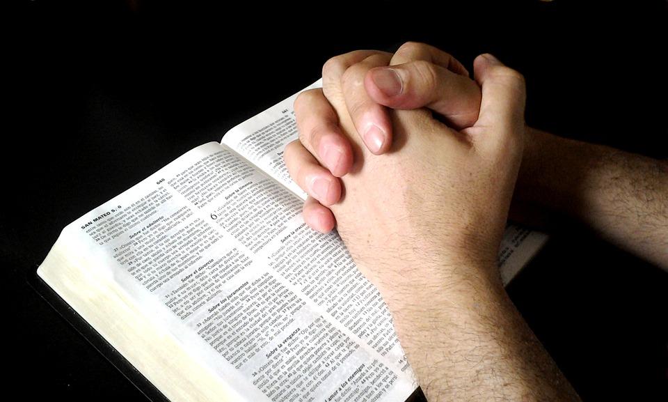 【鱼和饼】要坚定持续的祷告