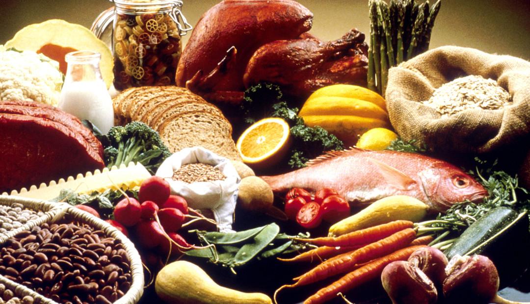 【鱼和饼】我们的食物