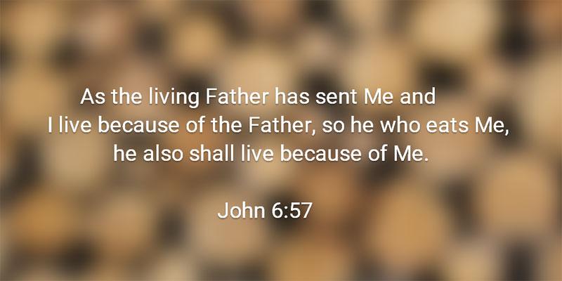 【读圣经学英语】那吃我的人,也要因我活着