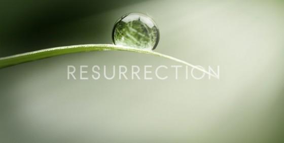【读圣经学英语】复活