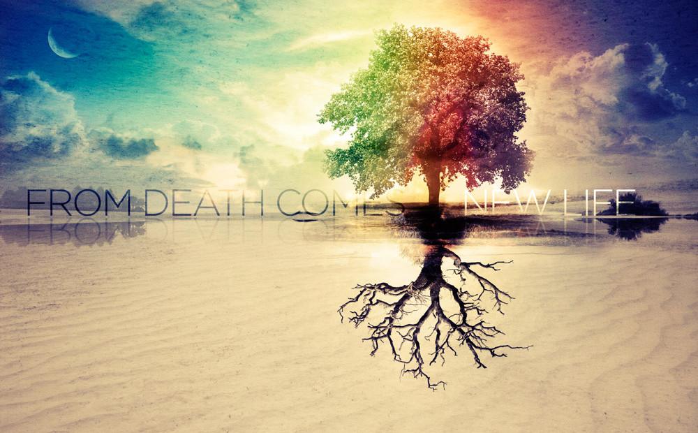 病危垂死与喜乐平安
