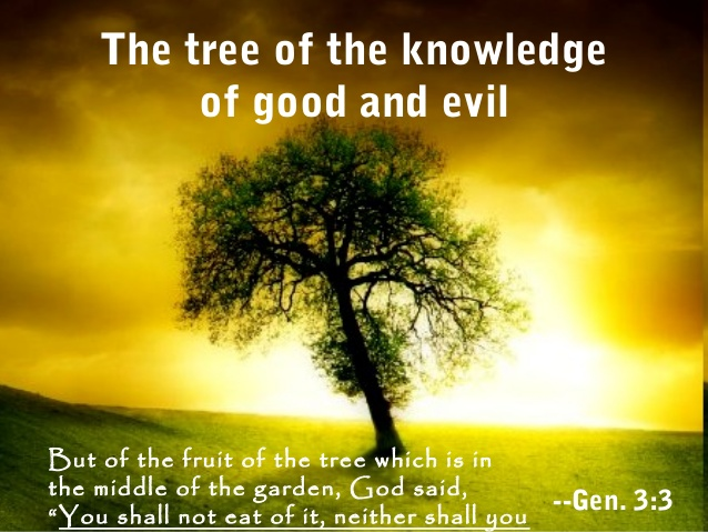 吃了知识善恶树的果子后….
