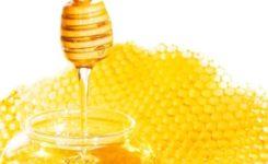 奶油与蜂蜜