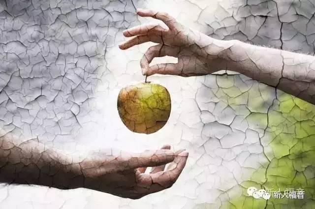 为什么亚当夏娃吃了苹果就堕落,就是犯罪了?