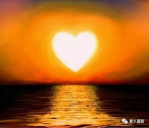 【新人见证】遇到爱,遇到光