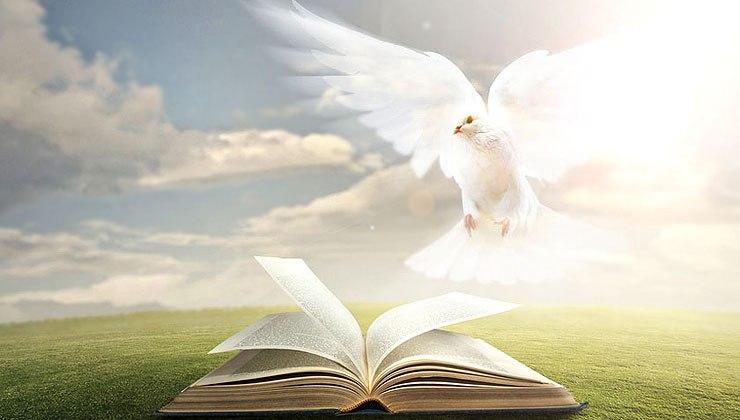 【读圣经学英语】宣示与你们
