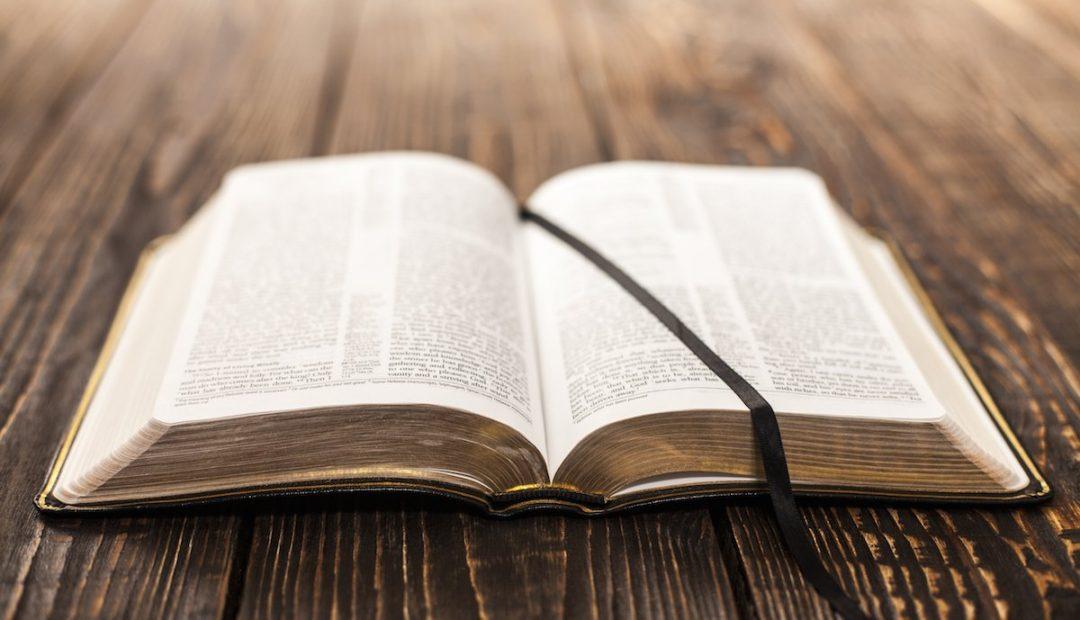 【读圣经学英语】所赐给我的话