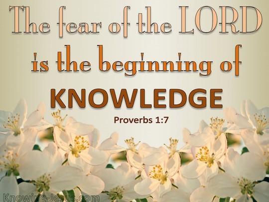 【鱼和饼】敬畏耶和华是知识和智慧的开端