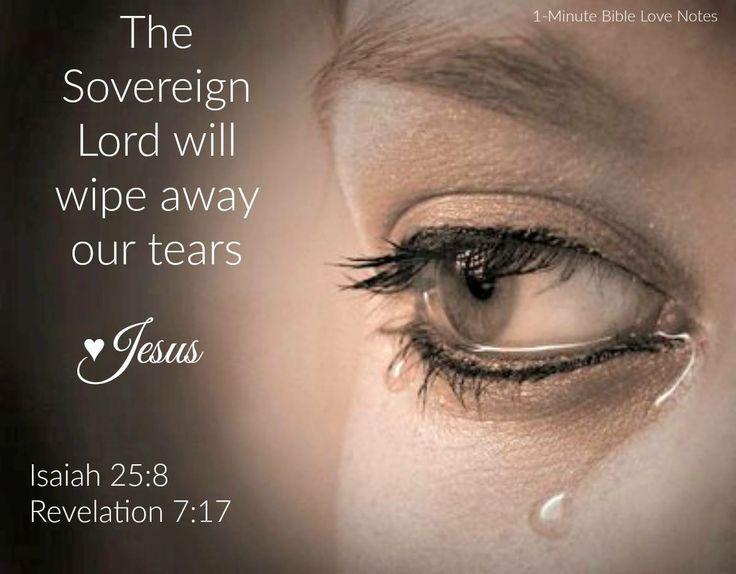 【鱼和饼】神也必从他们眼中擦去一切的眼泪