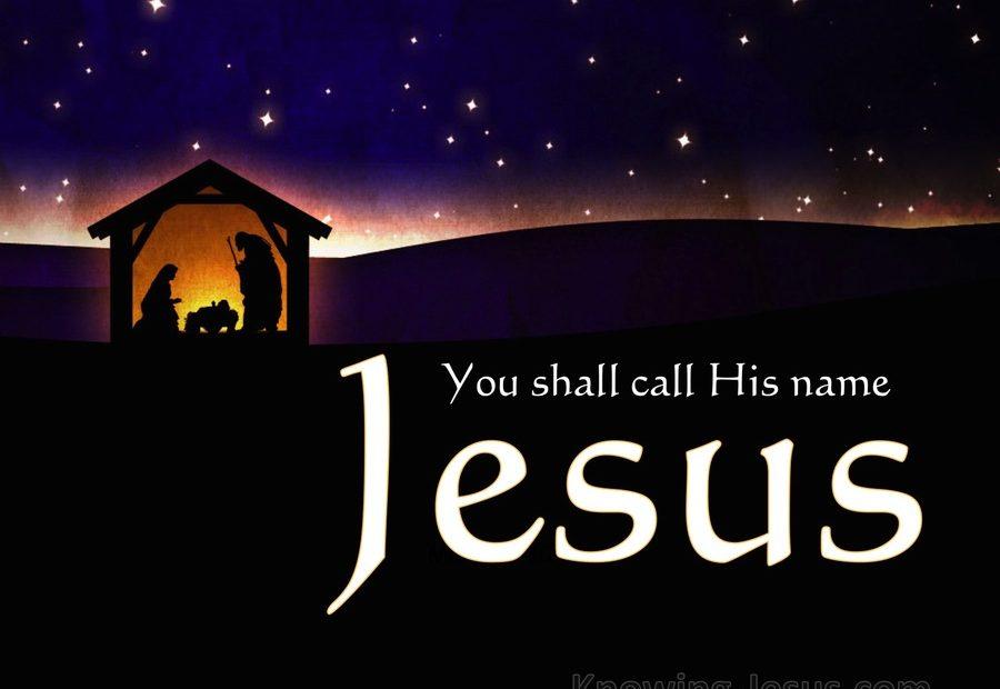 【读圣经学英语】将祂的百姓从他们的罪里救出来
