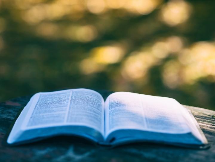 【读圣经学英语】受神指示