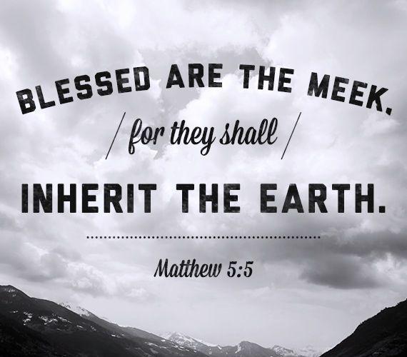 【读圣经学英语】温柔的人有福了