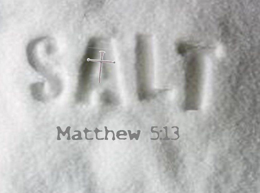 【读圣经学英语】地上的盐