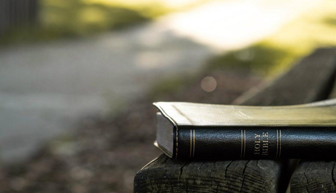 【读圣经学英语】这些话