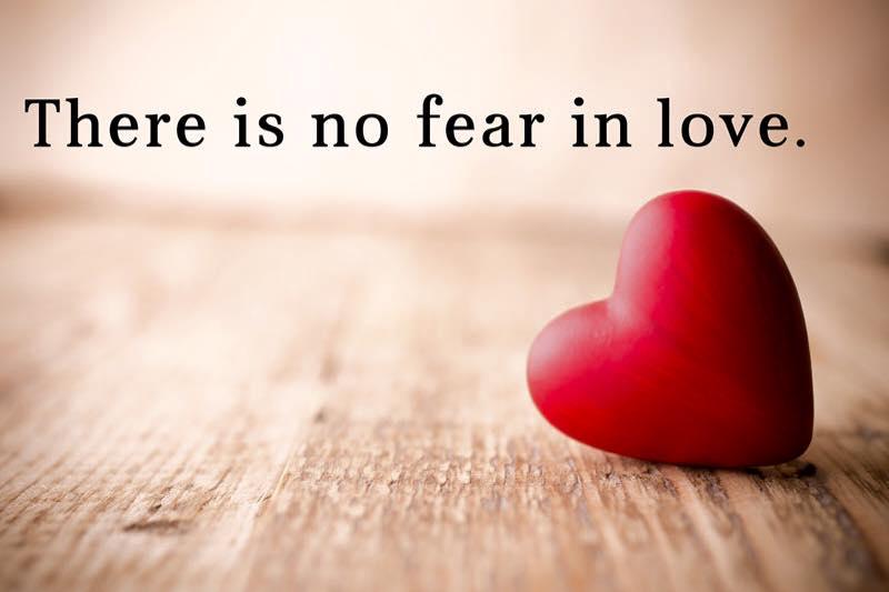 爱里没有惧怕