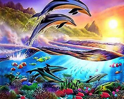 平安福音,如鱼得水