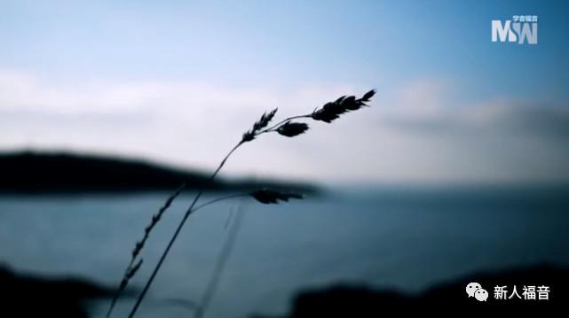 【港大·福音信息】五大理由让我们需要信耶稣