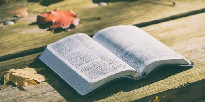 【读圣经学英语】一句话
