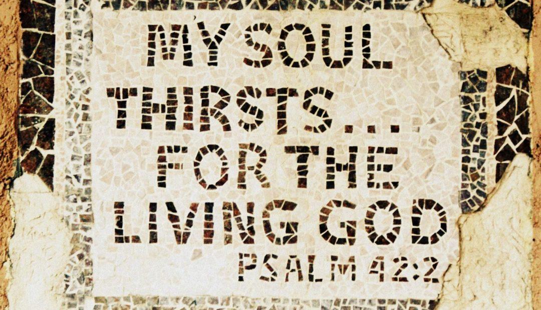 【鱼和饼】我的魂渴想神