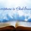 【鱼和饼】圣经都是神的呼出