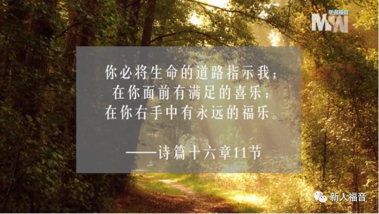 【幸福人生】我经历到,圣经中的这句话是真的