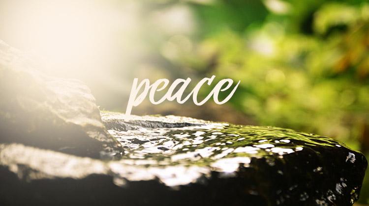 【读圣经学英语】平安