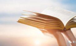 【圣经导读·感人见证】不再软弱,供应主话