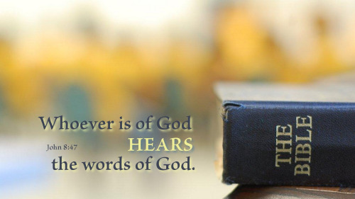 【读圣经学英语】出于神的,必听神的话