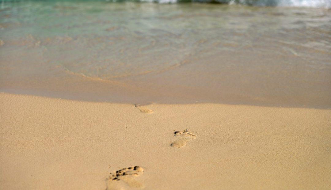 【读圣经学英语】当彼此洗脚