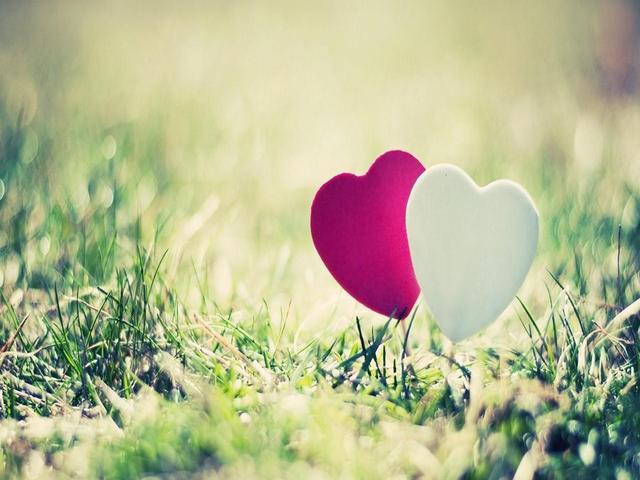 【读圣经学英语】要叫你们彼此相爱