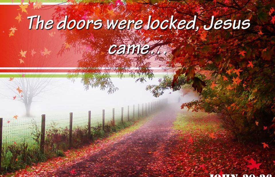 【读圣经学英语】耶稣却来站在当中