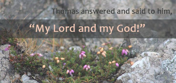 【读圣经学英语】我的主,我的神