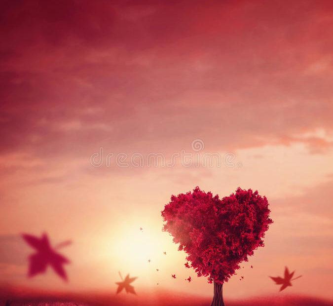 主的爱使我得满足