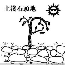【读圣经学英语】土浅石头地