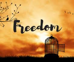 编者读者:真正的自由