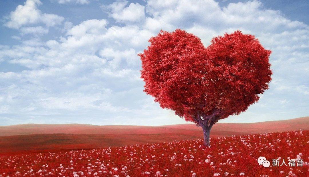 【启示录福音系列】第二讲:起初的爱
