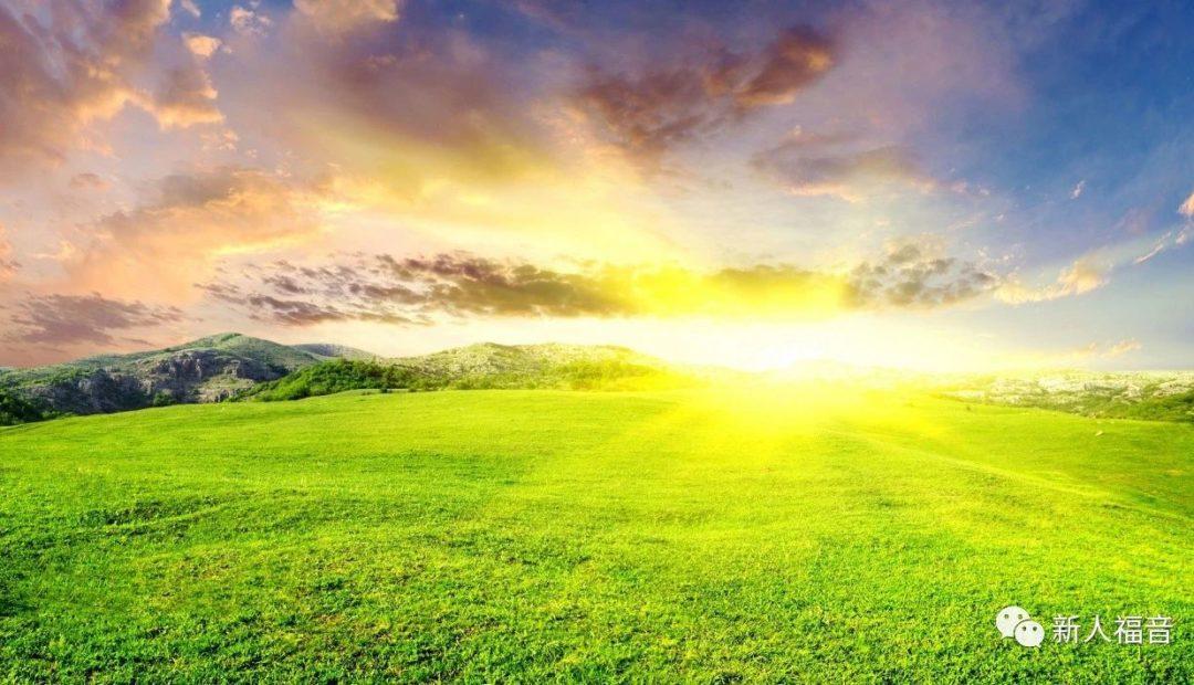 【幸福人生】 人生如客旅,何处可安家——一位留美博士的思考与探寻
